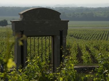 porte_vigne;