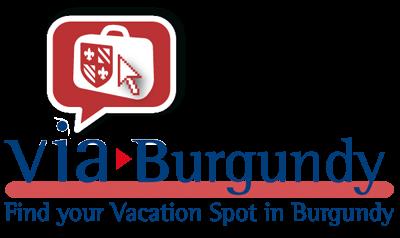 Logo-ViaB-en.png