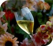 mini-photo-via-champagne.jpg
